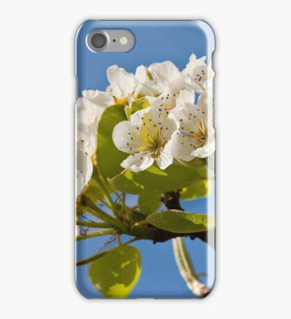 Pear Blossom iPhone Case/Skin