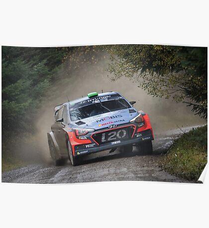 Hayden Paddon Rallying Poster