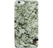 fungi (fun guy) iPhone Case/Skin