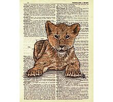 Lion Cub on Dictionary Paper Photographic Print