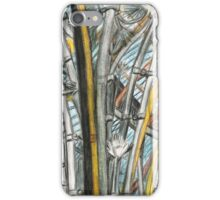 Roof at the Natural History Museum Oxford iPhone Case/Skin