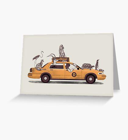 1-800-TAXI-DERMY Greeting Card