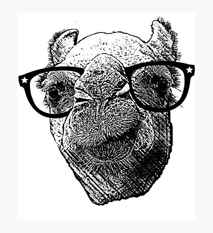 Who Needs to Know! Hipster Camel Hump Day Photographic Print