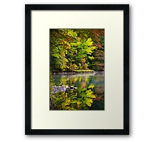 Fall Foliage Reflection Framed Print