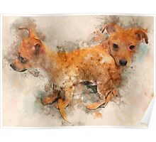 Tangled Twins - Chihuahua Puppy Watercolor Poster