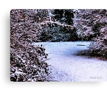 """Snowy Pathway""... prints and products Canvas Print"