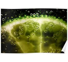 Lime slice in fizzy water Poster