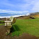 Bench By The Sea...Yachats, Oregon by Diane Arndt