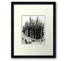 Grove at Icy Strait Point Framed Print