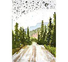 Denali Park Road Photographic Print