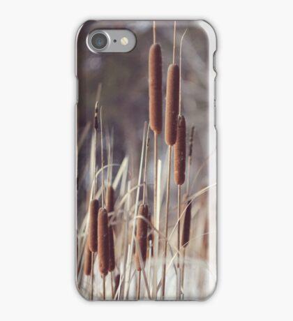 winter reeds iPhone Case/Skin