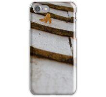 Rustic Tiles iPhone Case/Skin
