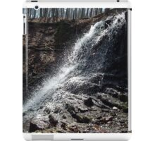 Waterfall iPad Case/Skin