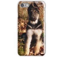 Shepherd Puppy Dog In Leaves Photo iPhone Case/Skin
