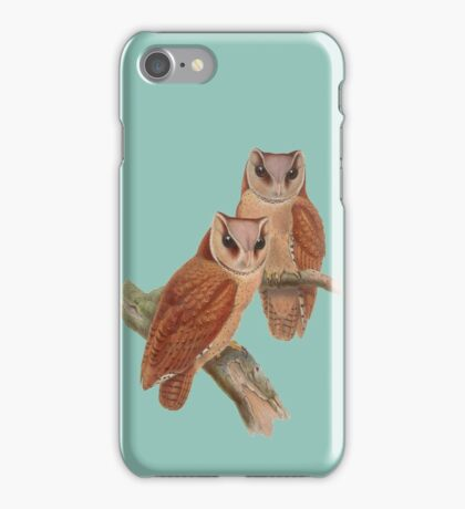 Pair of Owls Painting iPhone Case/Skin