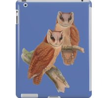 Pair of Owls Painting iPad Case/Skin