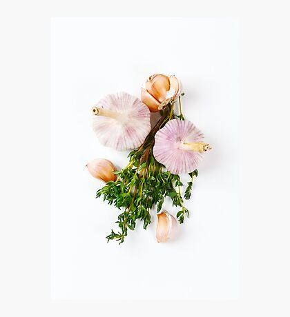 Fresh seasoning, garlic and thyme Photographic Print