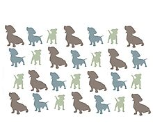 Doggy Doodles Photographic Print