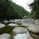 Mossman Gorge 2 by Jason Langer