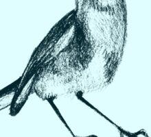 Drawing of hummingbird. Illustration Sticker