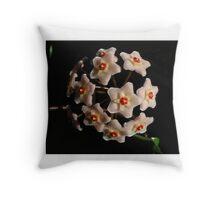 Wax flower (Hoya) Throw Pillow