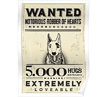 wanted  bull terrier Poster