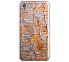 Cactus bark iPhone Case/Skin
