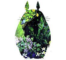 Totoro from Hayao Miyazaki - colorful Photographic Print