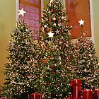 Three Christmas Trees by Cynthia48