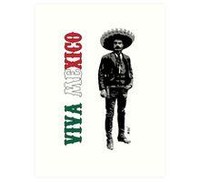 Viva Mexico Art Print