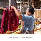 Lotus fiber worker, Burma by Jacinthe Brault