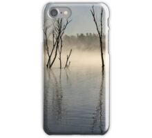 Fog in the delta in a summer day iPhone Case/Skin