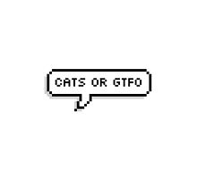 Cats or GTFO - Gerard Way by HesitantAlien