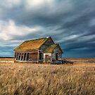 One Room Schoolhouse by Patrick Kavanagh