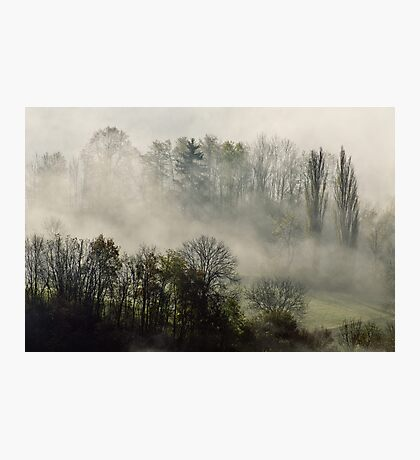 A november morning in the mist Photographic Print