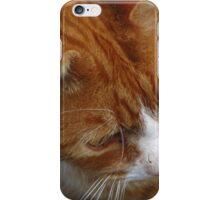 FELINE FACE iPhone Case/Skin