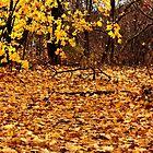 Gold leaf carpet.... by Poete100