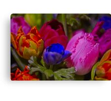 Vibrant colours Canvas Print