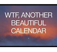 WTF, Another Beautiful Calendar by robertandjoey