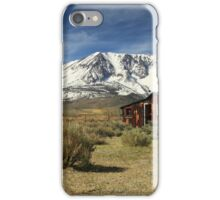 Guardian Of The Sierras iPhone Case/Skin