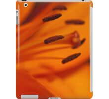 Dervishes Landscape iPad Cover iPad Case/Skin