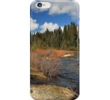 North Fork Deer Creek iPhone Case/Skin