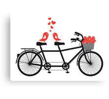 tandem bicycle with cute love birds Canvas Print