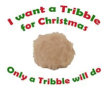Tribble for Christmas Photographic Print