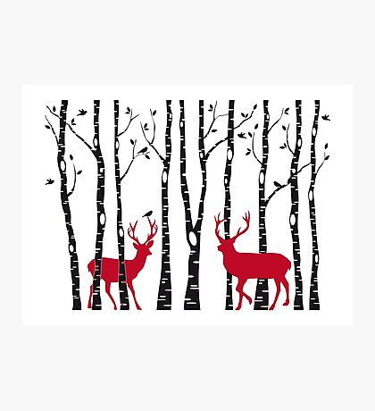 Christmas deers in birch tree forest Photographic Print