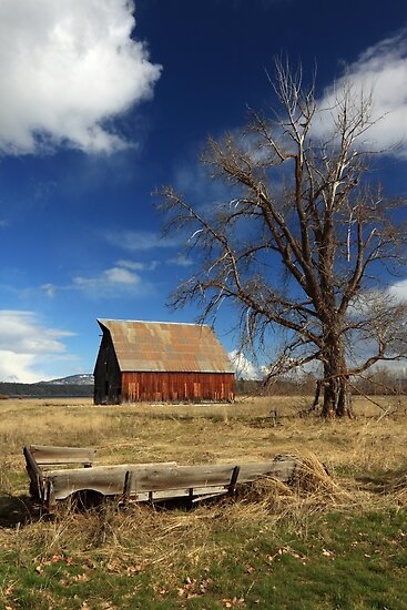 Old Barn And Wagon by James Eddy