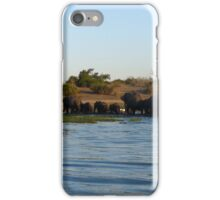 'Eles On Parade' iPhone Case/Skin