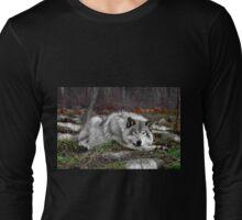 Do not disturb this wolf... Long Sleeve T-Shirt
