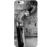 Woodstock Courthouse Detail  iPhone Case/Skin