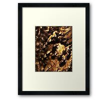 Feathered iPad Cover Framed Print